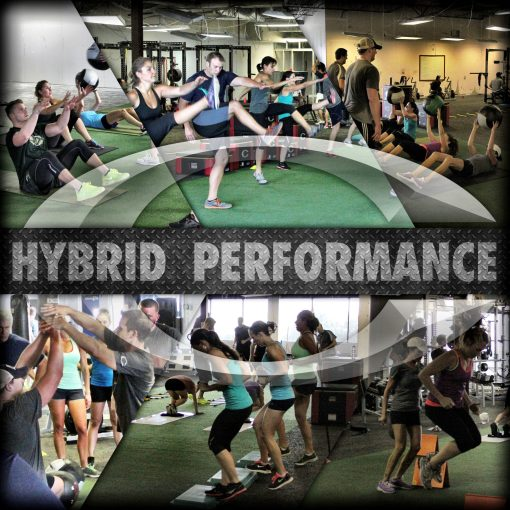 Hybrid-Performance-Training image